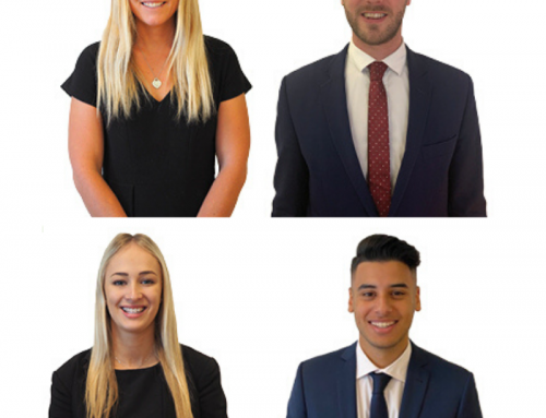 Meet the New Members of Our Team